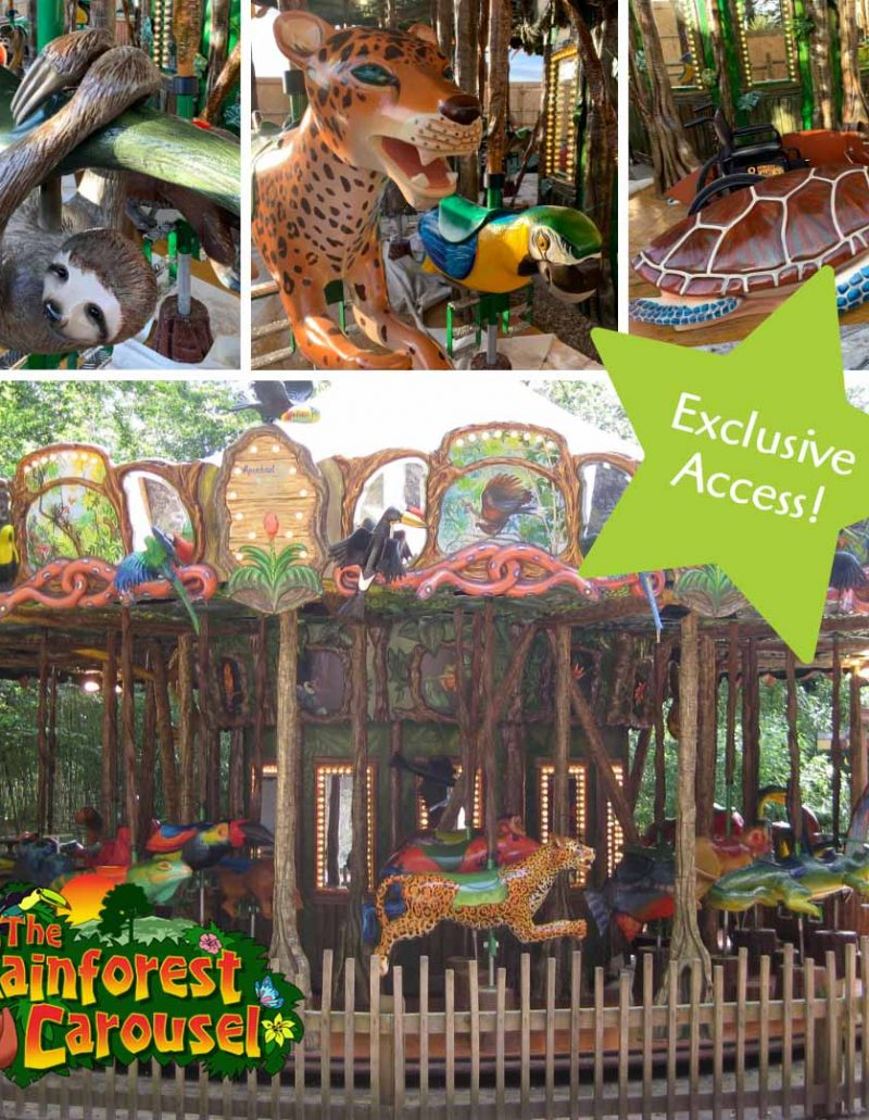 Exclusive-Access-to-The-Rainforest-Carousel